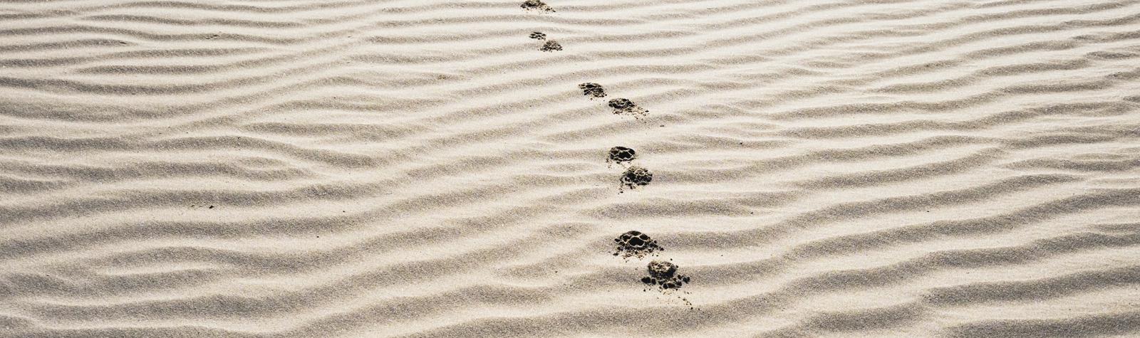 어카운트 기반 마케팅(ABM, Account-Based Marketing) 5가지 방법